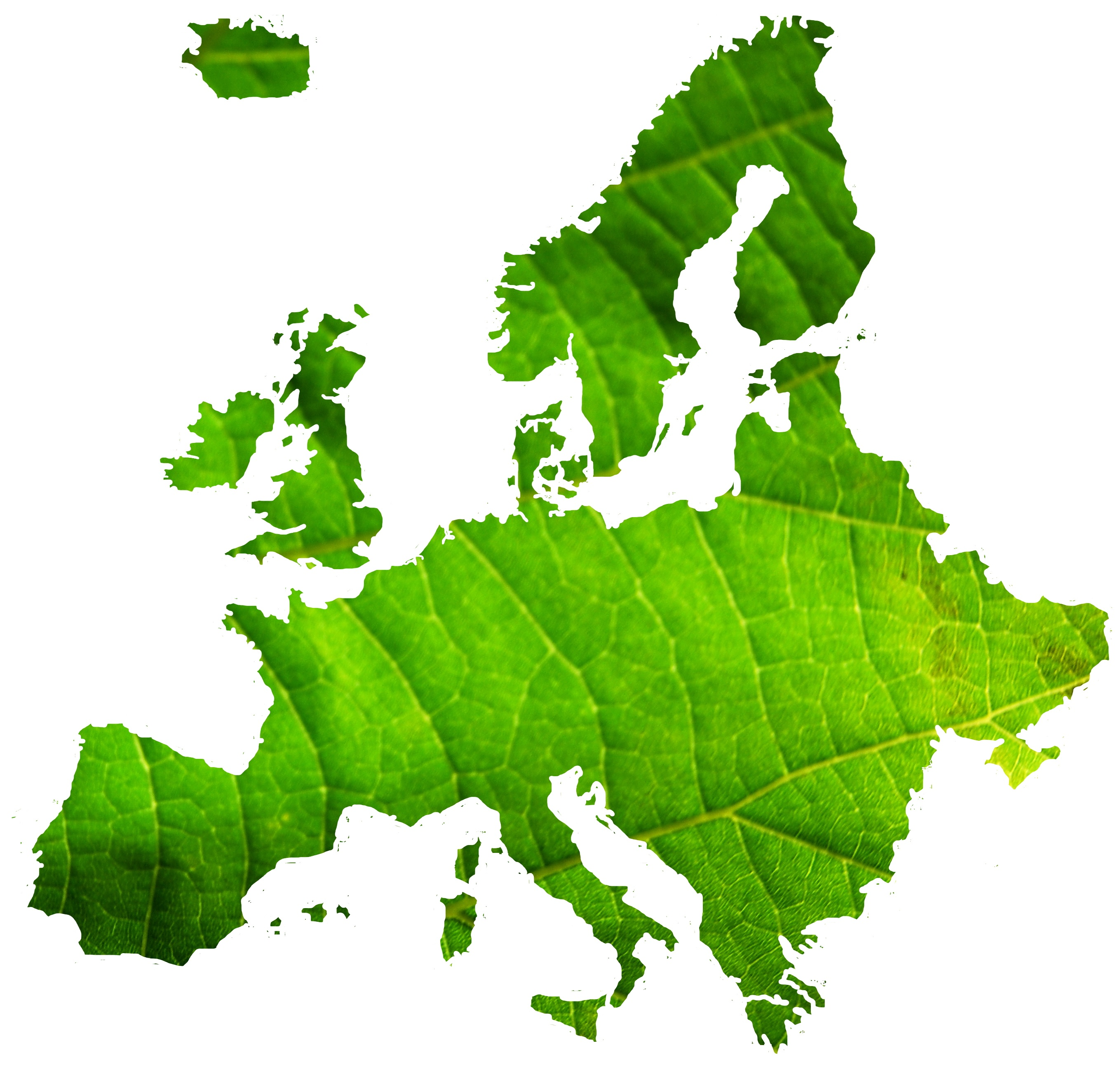 MADE IN ITALY CON L'AGROALIMENTARE  PIU' GREEN D'EUROPA